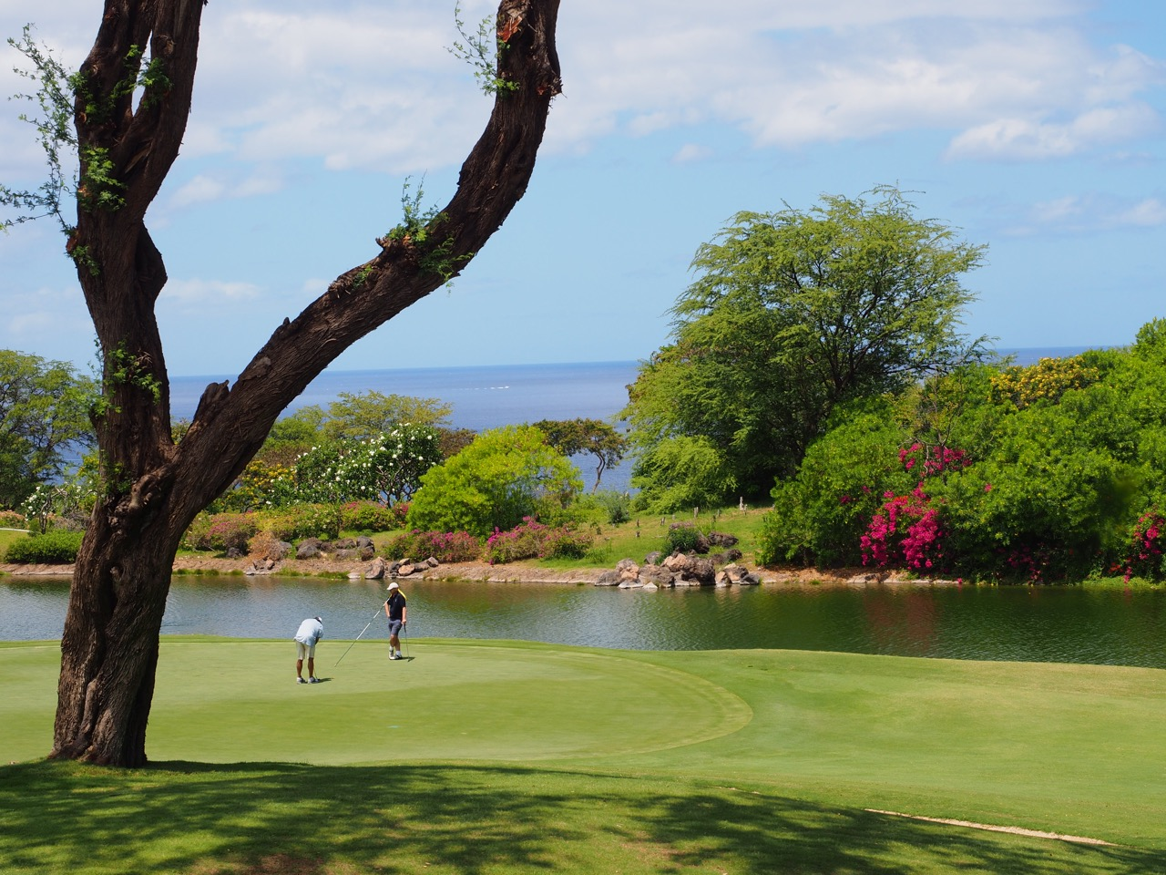Wailea Emerald Course