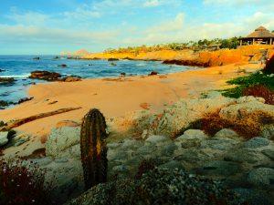 Viva Los Cabos …tout savoir sur la destination du Grand Voyage 2016 !