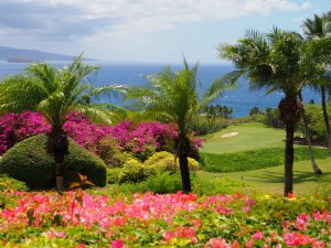 En passant par Hawaï …