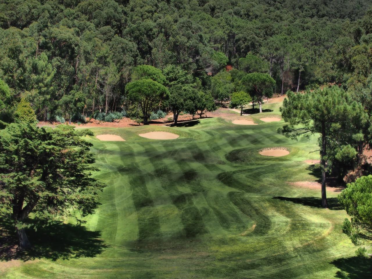 La belle r action du nord avant les simples blog golfeur g t for Moquette rayee