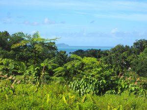 Un repérage essentiel aux Fidji !