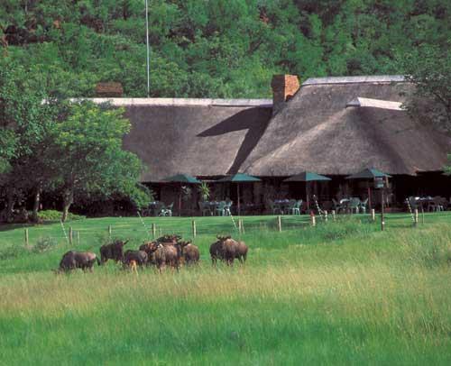 Bakubung Lodge 2004
