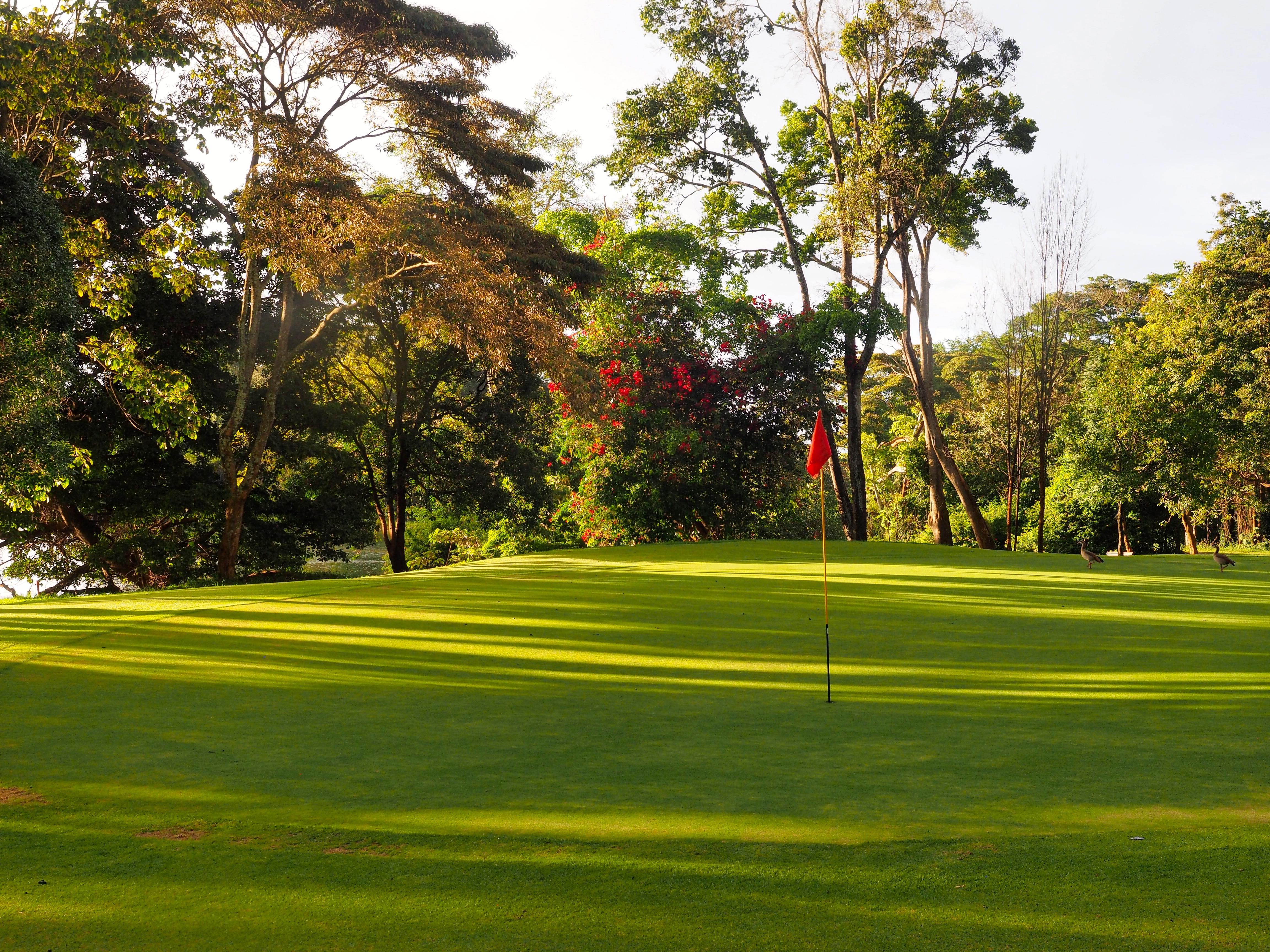 Windsor Golf