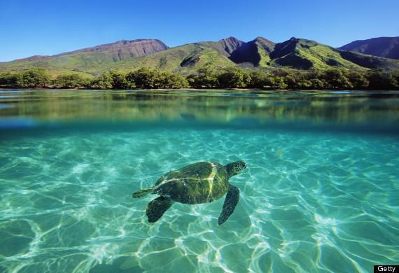 Maui, étape 7