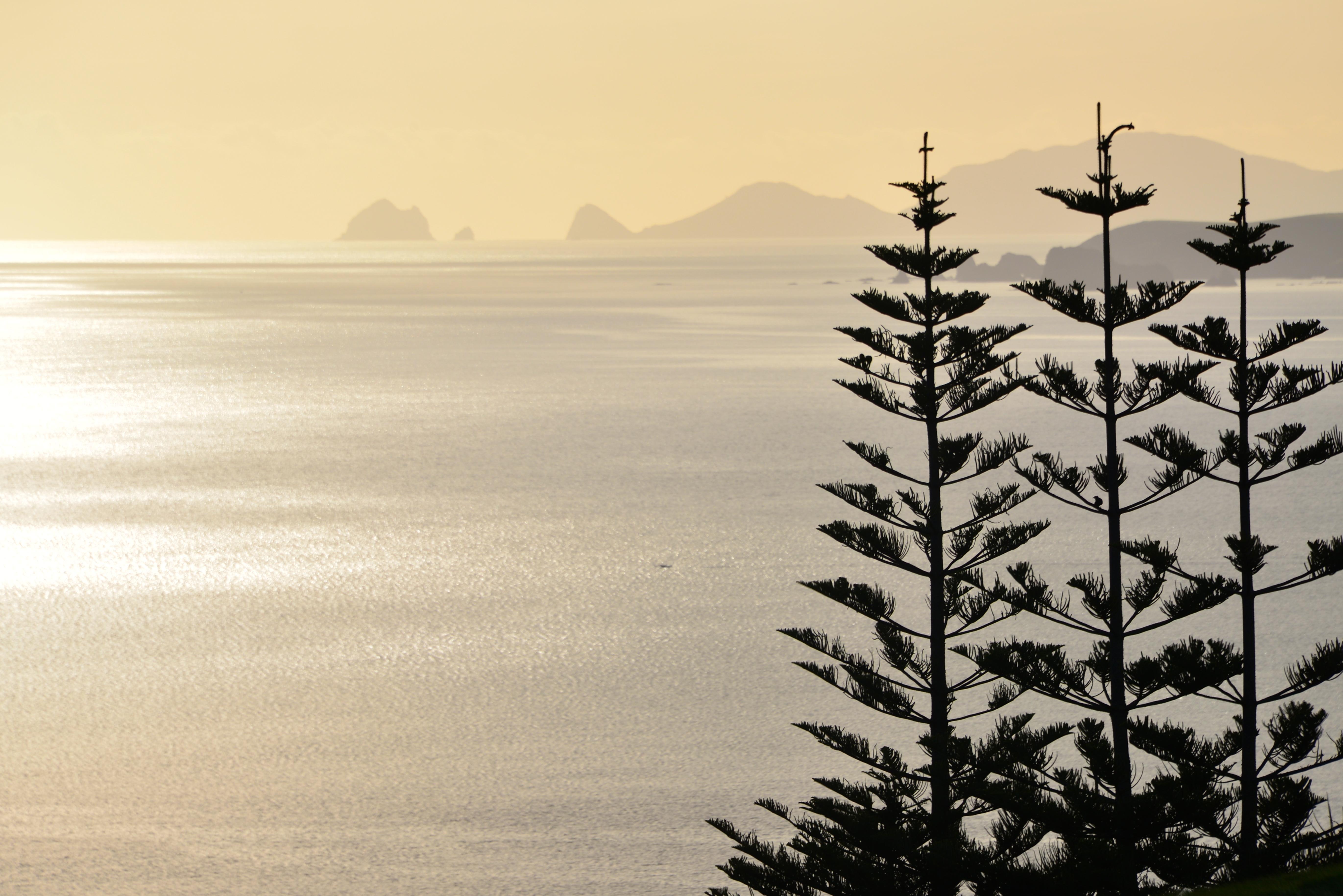 Les merveilleuses vues de Kauri Cliffs - Nouvelle-Zélande - Grand Voyage 2014