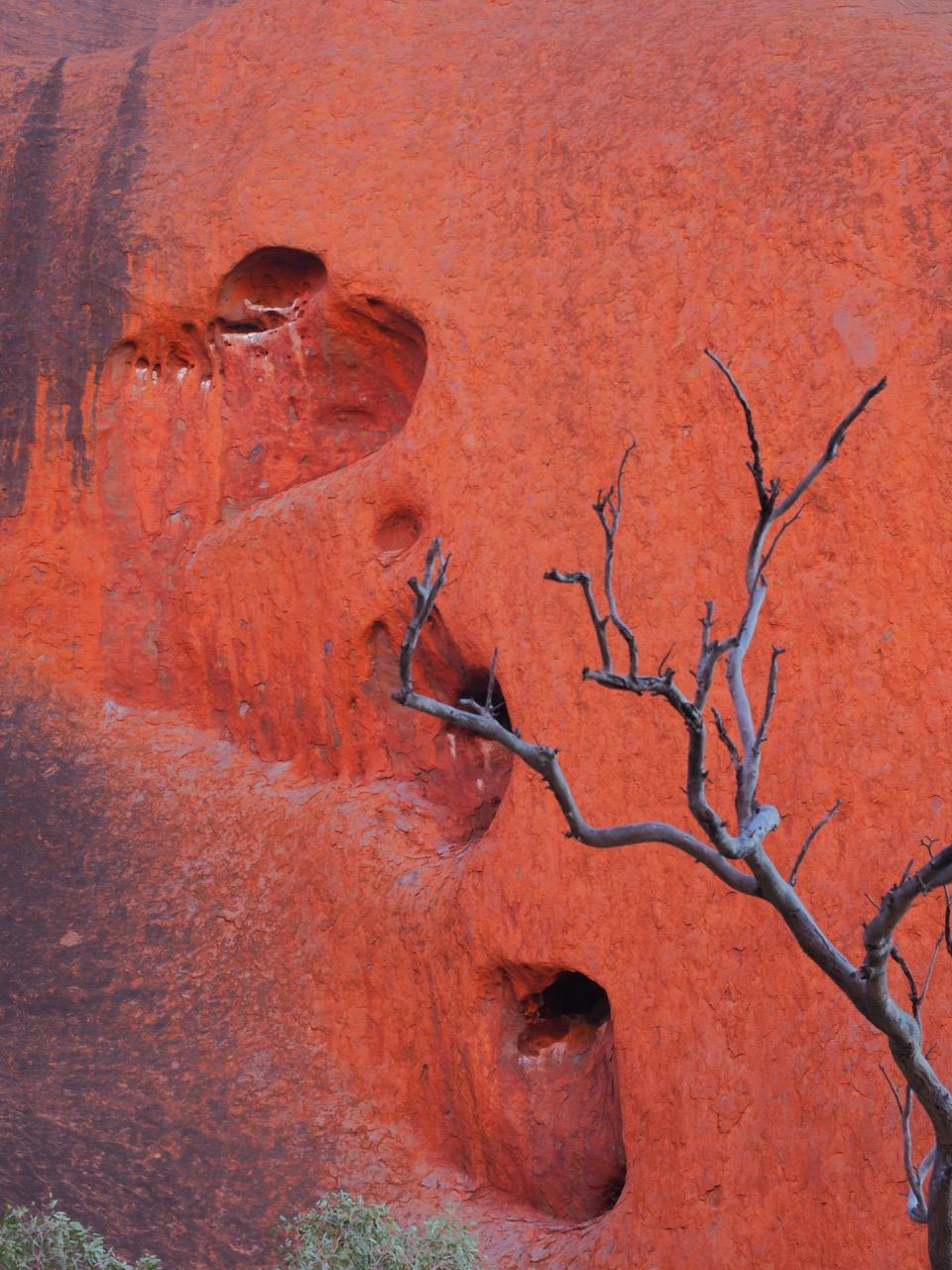 Détail sur Uluru