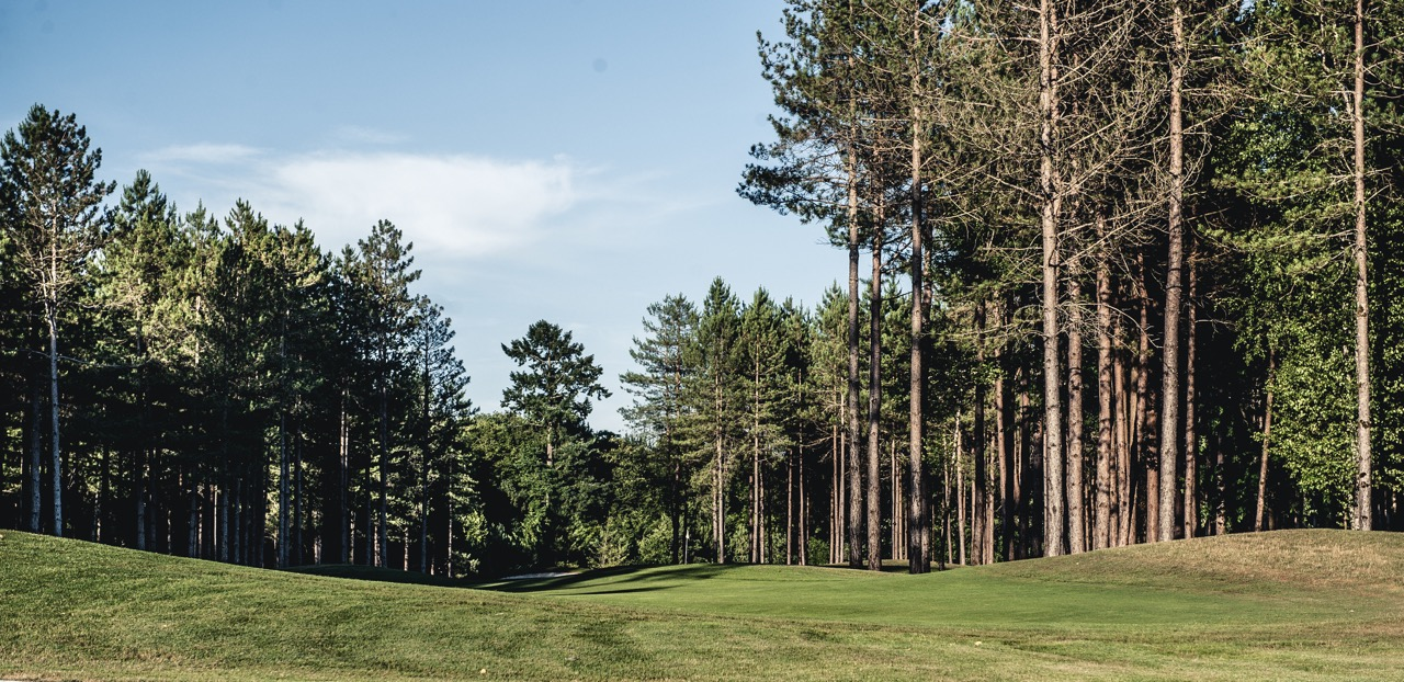 Excellent Golf Shot