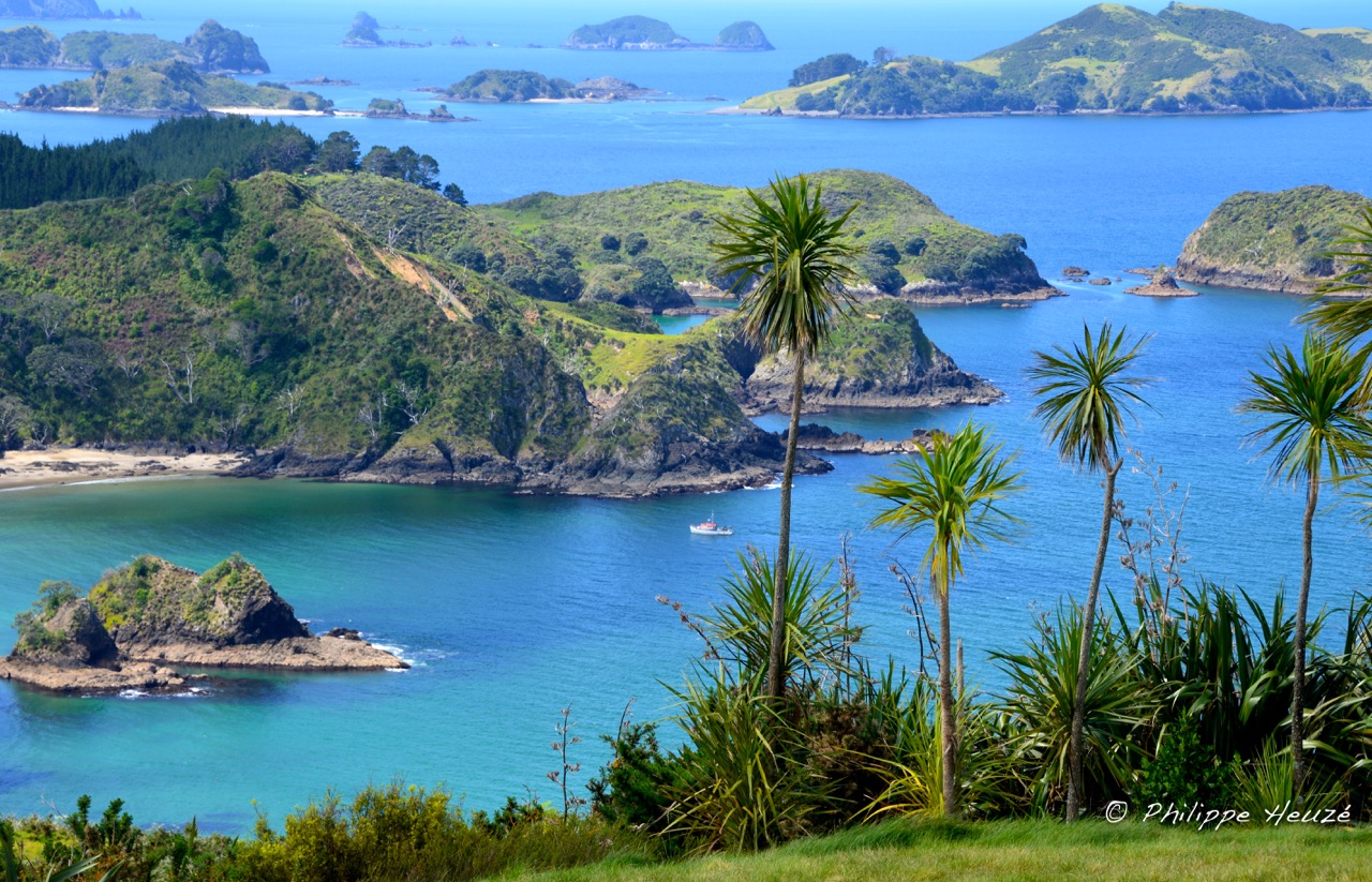BAY OF ISLANDS (1 sur 1)