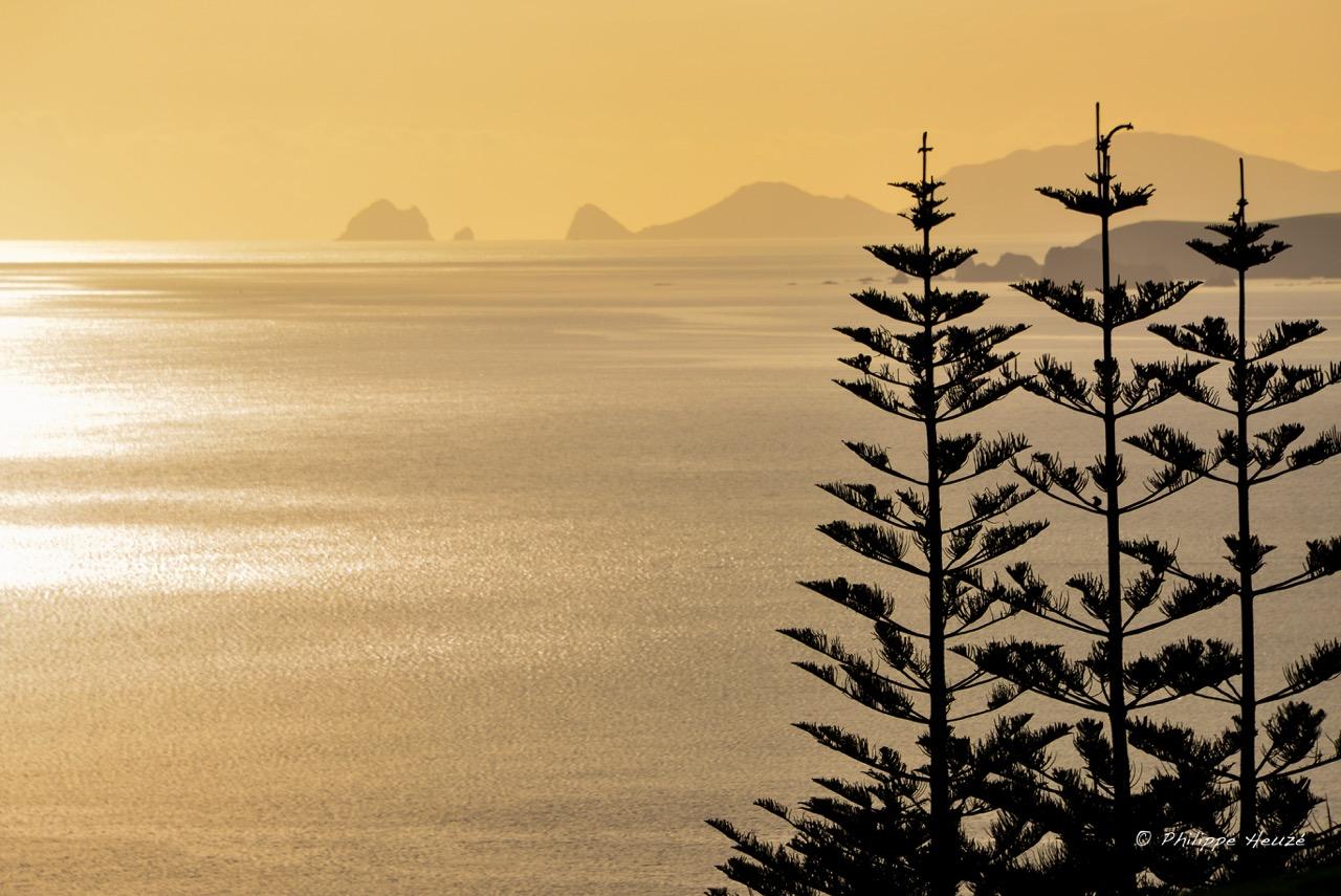 Kauri Cliffs 2014